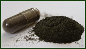 wellstar-green-gold-imune-alga-4x180-barna